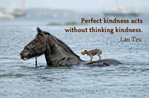 perfect kindness